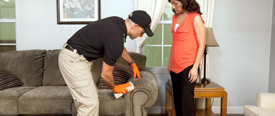 Paris, TN carpet upholstery cleaning