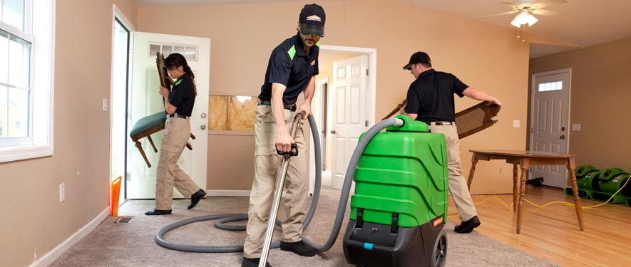 Paris, TN cleaning services